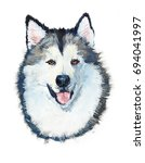 malamute. portrait dog. gouache ... | Shutterstock . vector #694041997