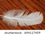 Small photo of The feather,Air current of the feather