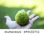 Small photo of Adam's apple