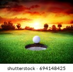 ball in hole   golfing   target ... | Shutterstock . vector #694148425