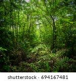 green forest | Shutterstock . vector #694167481