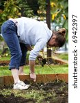 woman pulling the weeds out of... | Shutterstock . vector #6942397