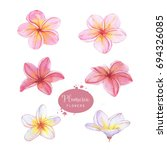 hand drawn watercolor floral... | Shutterstock . vector #694326085