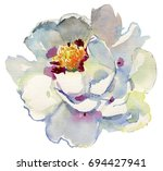 large white peony on a white... | Shutterstock . vector #694427941