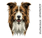 dog head breed border collie... | Shutterstock .eps vector #694496929