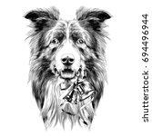 dog head breed border collie... | Shutterstock .eps vector #694496944
