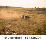 group of beautiful wild horses...   Shutterstock . vector #694528204