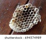 wasp nest | Shutterstock . vector #694574989