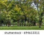 beautiful park scene in public...   Shutterstock . vector #694613311