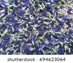 butterfly pea herb | Shutterstock . vector #694623064