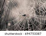 a beautiful closeup of a spider ... | Shutterstock . vector #694753387