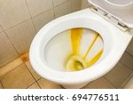 dirty and unhygienic toilet... | Shutterstock . vector #694776511
