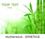 bamboo background   Shutterstock . vector #69487618