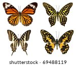 Stock photo butterflies isolated on a white background 69488119