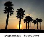 Florida Sunrise With Palm Tree...