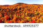 autumn foliage in maine forest... | Shutterstock . vector #694925377