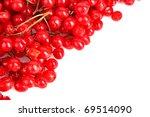Red Berries Of Viburnum Isolat...