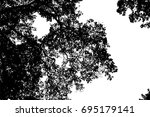 tree silhouette isolated on... | Shutterstock .eps vector #695179141