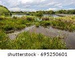 wakodahatchee wetlands in... | Shutterstock . vector #695250601