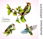 waxwing on branches with leaves.... | Shutterstock .eps vector #695331475