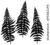 fern silhouettes on white... | Shutterstock .eps vector #695362195