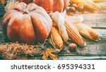 pumpkin  squash. happy... | Shutterstock . vector #695394331