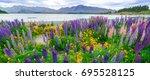 landscape at lake tekapo and... | Shutterstock . vector #695528125
