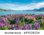 landscape at lake tekapo and... | Shutterstock . vector #695528224