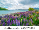 landscape at lake tekapo and... | Shutterstock . vector #695528305