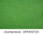 texture of bright green... | Shutterstock . vector #695543725