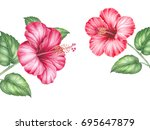 red hibiscus bouquet. image for ... | Shutterstock . vector #695647879
