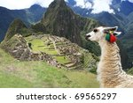 Llama at Historic Lost City of Machu Picchu - Peru - stock photo