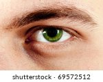 Green Male Eye Macro