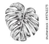tropical monstera leaf  hand... | Shutterstock .eps vector #695762275