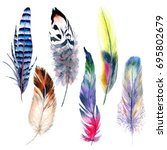 Watercolor Bird Feather Patter...