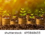 Small photo of Money growing in soil,success concept