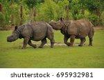 two indian rhinoceros | Shutterstock . vector #695932981
