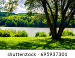 view beneath the tree on pond... | Shutterstock . vector #695937301