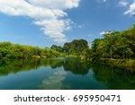 ban khao khom peat swamp forest ...   Shutterstock . vector #695950471