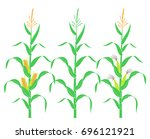 corn stalk. isolated corn on... | Shutterstock .eps vector #696121921