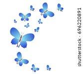 Beautiful Butterflies  Blue...