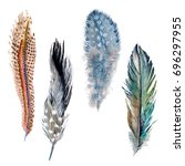 watercolor bird feather from...   Shutterstock . vector #696297955
