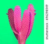 cactus. art gallery fashion... | Shutterstock . vector #696298549