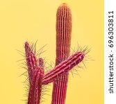 pink cactus set. art gallery... | Shutterstock . vector #696303811