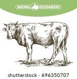 breeding cow. animal husbandry. ... | Shutterstock .eps vector #696350707