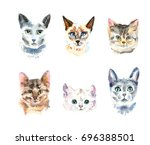 Stock photo set of six different watercolor cats watercolor animal painting kids background hand drawn 696388501
