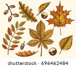 autumn leaves. vector hand... | Shutterstock .eps vector #696462484
