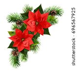 Red Poinsettia Flowers And...