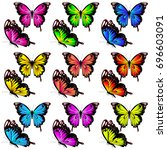 beautiful color butterflies set ... | Shutterstock .eps vector #696603091