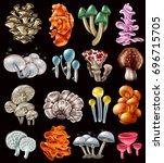 set of colorful magic mushrooms ... | Shutterstock .eps vector #696715705